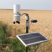 Station météo installée en bordure d'un champ de Ratte du Touquet